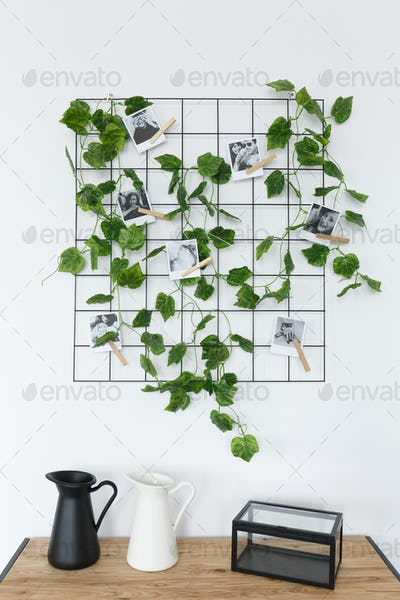 Ivy on trellis, photographs, and decorations