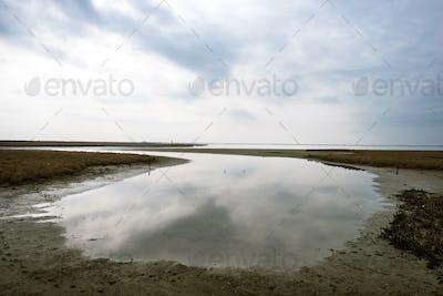 Landscape on delta of river Evros, Greece
