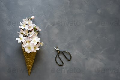 Flowers in ice cream cone on cement background