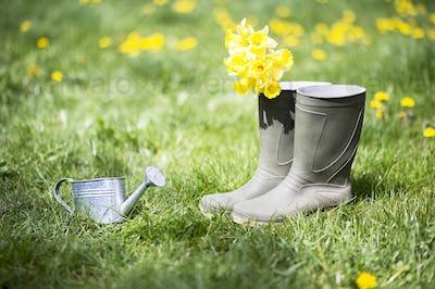 Summer gardening concept