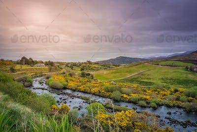 Beautiful rural Irish landscape