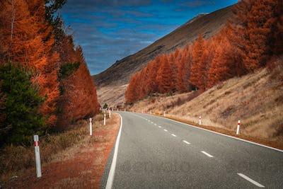 Beautiful road in New Zealand Alps