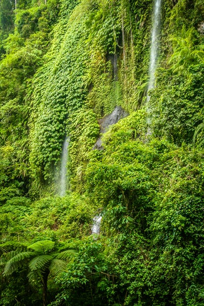 Tropical waterfall in Lombok