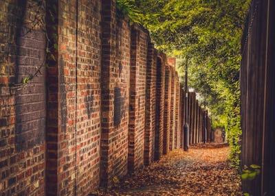 Autumn pathway in town