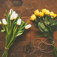 Bouquet of white tulips and  yellow roses on wooden backgound to