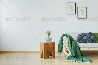 Green blanket on the sofa