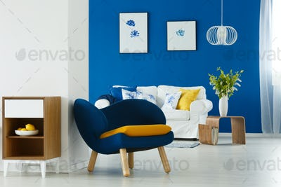 Modern furniture in living room