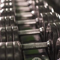 Rows of dumbbells in the gym close-up