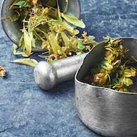 medicinal hops cones