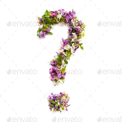 Question mark of natural meadow flowers and lilacs on a white ba