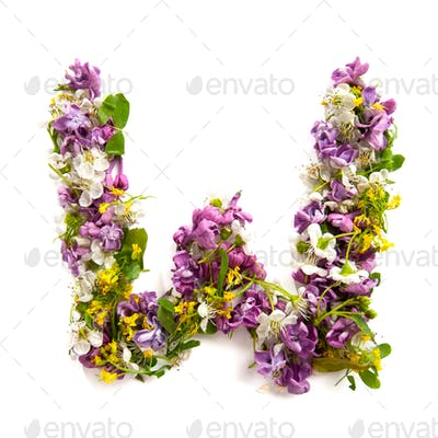 The letter «W» made of various natural small flowers.