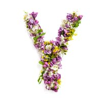 The letter «Y» made of various natural small flowers.