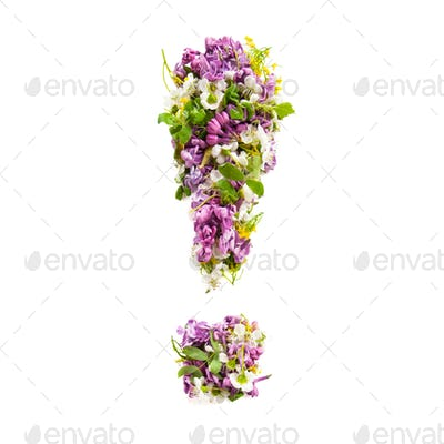 Exclamation mark from natural meadow flowers and lilacs on a whi