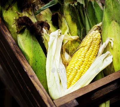 Aerial view of sweencorn cob in wooden basketr