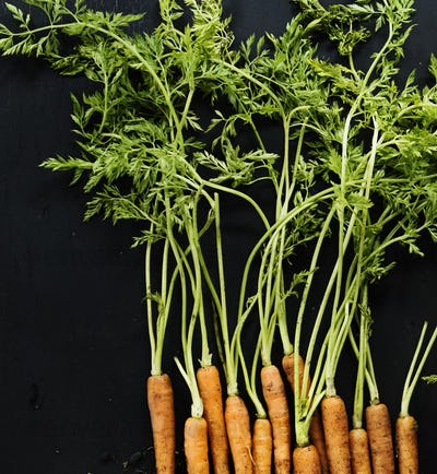 Aerial view of fresh organic carrots with black background
