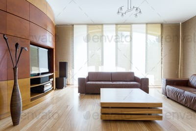Modern spacious room with leather sofas