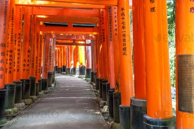 Wooden Torii Gates near Kyoto, Japan