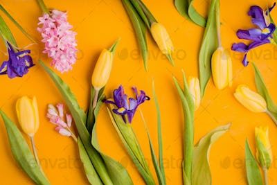 Colorful flowers on the yellow background top view