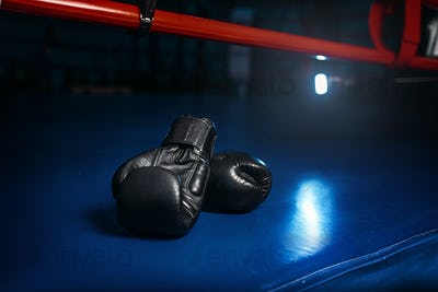 Black gloves on the ring, boxing concept, nobody