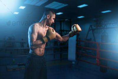 Portrait of muscular boxer in black gloves
