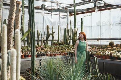 Redheaded girl standing in a glass house full of cacti