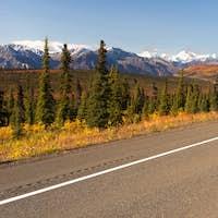 Highway Curve Wilderness Road Alska Mountain Landscape
