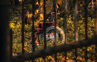 Empty wheelchair in untidy garden at sunset