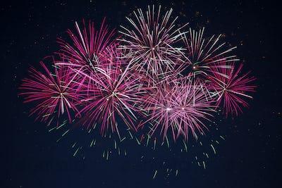 Sparkling maroon red pink celebration fireworks