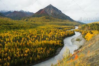 Matanuska River Flows utumn Season Fall Color Alaska