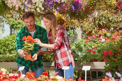 People watching flowers in garden
