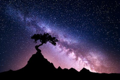 Milky Way and tree on the mountain