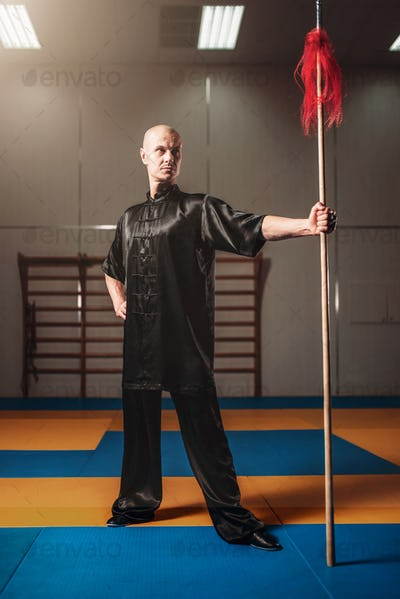 Wushu fighter poses with lance, martial arts