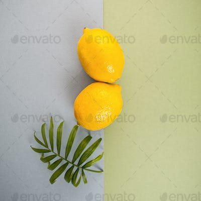 Two large ripe lemons and a green leaf on a blue-green pastel ba