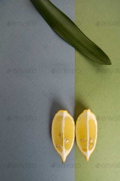 Minimalistic composition with two lobules of limon on a blue-gre
