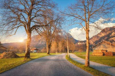 Amazing rural road with trees, colorful green grass