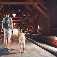 Tourist with his dog inside of the covered bridge