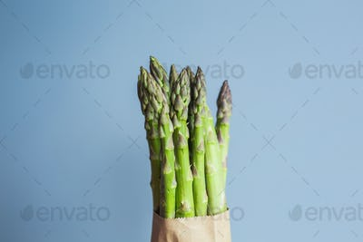 Bundle of green asparagus on blue background. Concept of vegans, vegetarians and healthy food