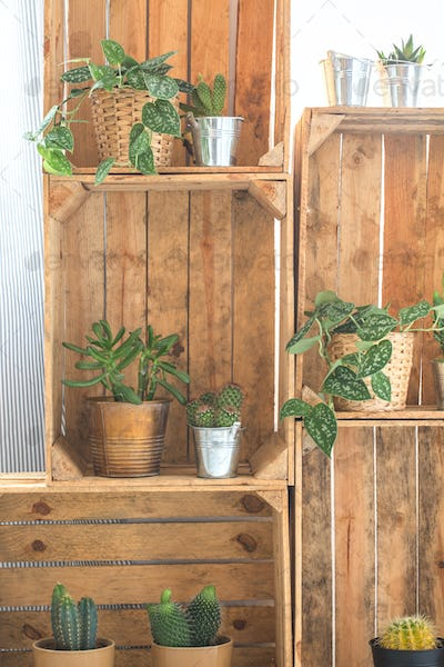 Shelf made of wooden crates