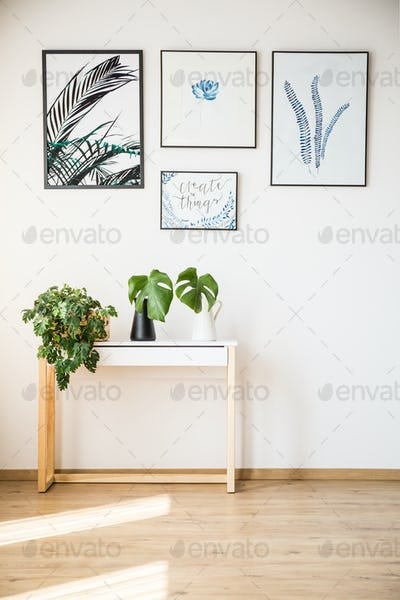 Plants on small table