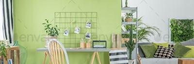 Green study room