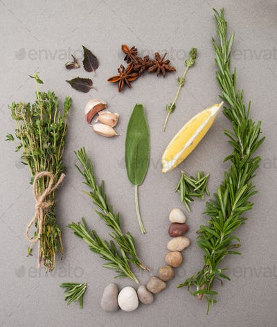 Various spicy herbs on a gray table.