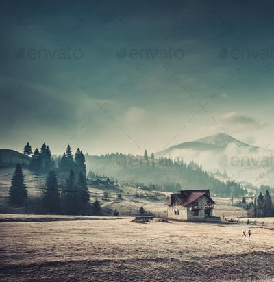 Rural house in the Carpathian mountains