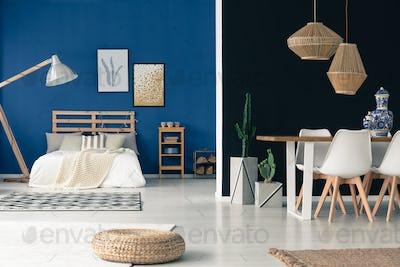 Cozy blue studio
