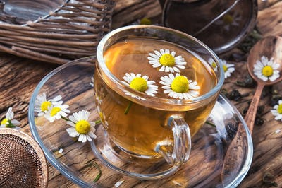 cup of herb tea with chamomile flowers