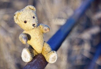 Toy bear - hope concept