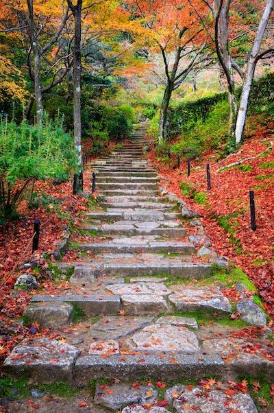 Stairway in autumn, Jojakkoji temple, Arashiyama, Kyoto, Japan