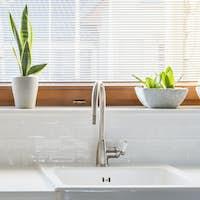 Tidy white kitchen