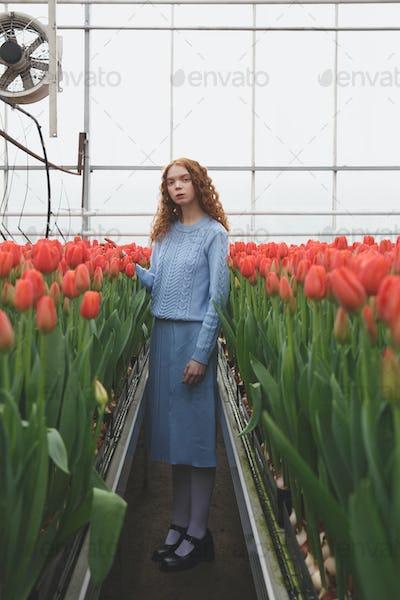 Girl between red tulips