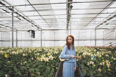 Woman looking at flowers in orangery
