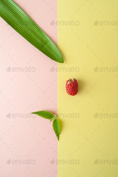 One raspberry, mint and leaf of a tropical plant on a pastel yel